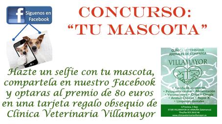 Concurso Villamayor