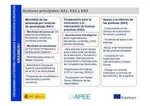 figura 1 estrucutra de los programas europeos
