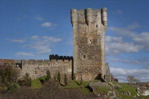 castillomonleon02